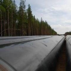 Bulgaria ar putea cumpara gaze naturale din Egipt