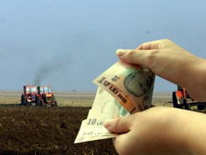 CE a stabilit sa penalizeze Romania cu inca 5,3 mil euro pentru intarzierea platilor SAPS 2007