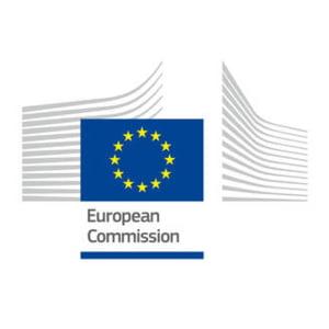 CE atrage din nou atentia in legatura cu modificarea Legilor Justitiei: Sa fie consultata Comisia de la Venetia