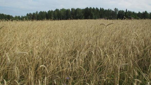 CE se razgandeste privind platile directe din agricultura. Ce modificari se fac pentru 2014