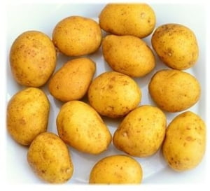 Cand viata copiaza filmul. NASA vrea sa cultive cartofi pe Marte