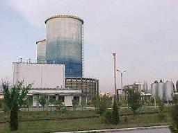 Carbonifera Ploiesti investeste 6,74 milioane lei in lucrari miniere