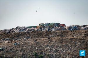 Care sunt planurile autoritatilor pentru a elimina, pana in 2020, gropile de gunoi din Ilfov