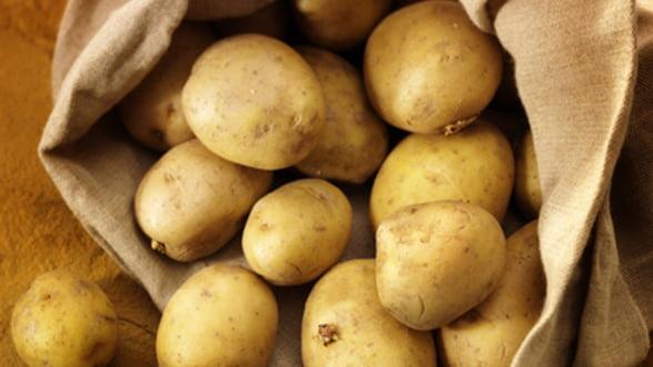 Cartoful devine in Grecia un simbol al luptei de supravietuire in fata austeritatii