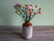 Casa ta va arata perfect cu ajutorul unor aranjamente florale de toamna
