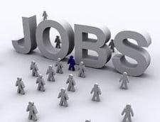 Cat este de eficient Programul de ocupare a fortei de munca?