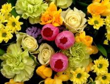 Cat platesc romanii online pe flori in luna martie?