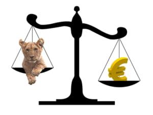 Cat timp cursul sta sub 5,4 lei, alegeti creditul in euro