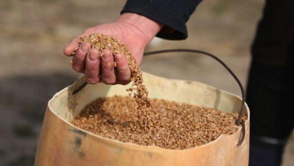 Cati bani primesc agricultorii de la stat in 2013