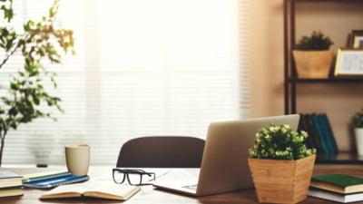 Cauti cea mai moderna si potrivita mobila pentru biroul tau? Vrei sa ai de unde alege?