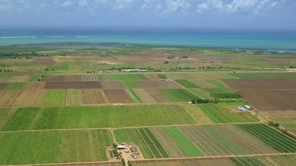 Ce conditii pune statul la vanzarea terenurilor agricole din 2014
