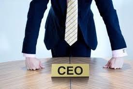 Ce fel de CEO ai fi?