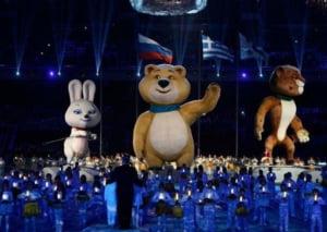 Ce venituri a obtinut Rusia in urma Olimpiadei de la Soci