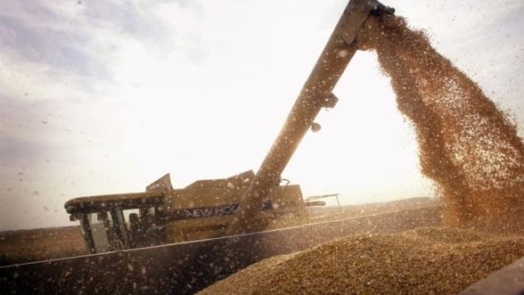 Ce vor face fermierii cu superproductia din 2013