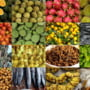 Cea mai mare ferma de plante aromatice din Europa are vanzari de 2 mil. euro pe an