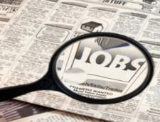 Cele mai multe locuri de munca vacante sunt in industrie