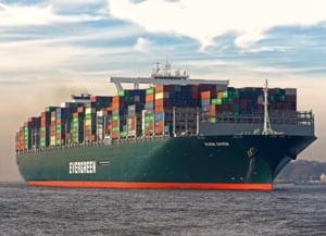 Celula de criza la ANSVSA pentru a gestiona situatia navelor cu peste 130.000 de oi care nu pot traversa Canalul Suez