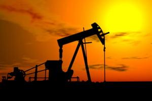 Cererea mondiala de petrol va scadea cu 2,4 milioane barili/zi in 2009