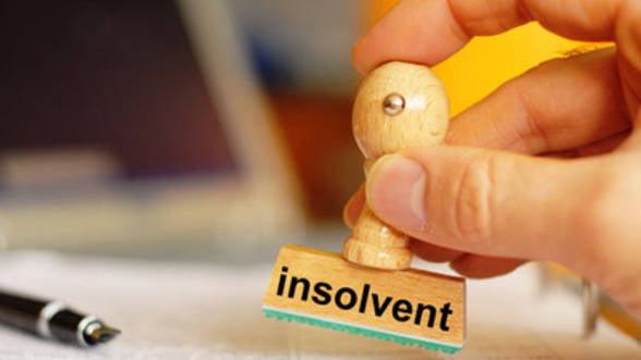 Cine risca insolventa in 2013 - studiu