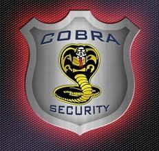 Cobra Security, vanduta catre grupul suedez Securitas AB