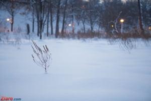 Cod galben de polei, vant puternic si ninsori in aproape toata tara