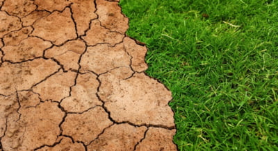 Comisia Europeana a adoptat o lege privind atingerea unui nivel zero al emisiilor din UE