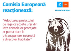 Comisia Europeana ne avertizeaza ca legea care scoate ursii de sub protectie nu respecta directivele europene