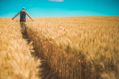 Comisia Europeana va restitui 444 de milioane de euro fermierilor europeni