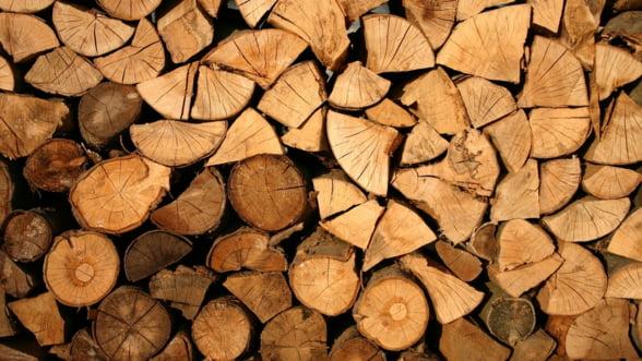 Comunitatea forestierilor: In industriile lemnului si mobilei din Romania s-a instalat o stare de criza