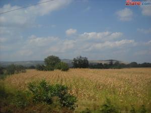 Conditii dure pentru strainii care vor sa cumpere terenuri agricole in Romania - proiect