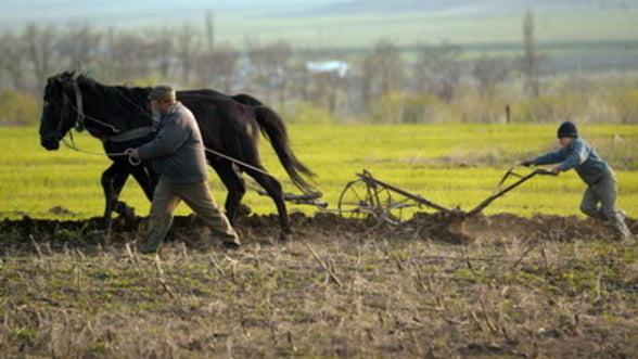 Crestere economica de 0,3% in 2012. Agricultura e in picaj