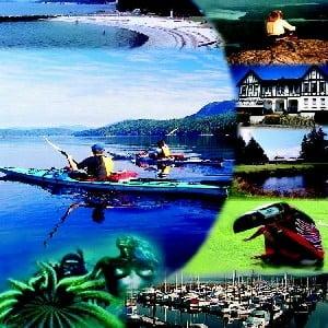 Crestere impresionanta a tranzactiilor online in segmentul turism-transporturi