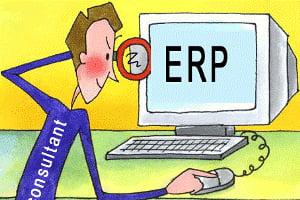 Crestere spectaculoasa in piata de soft si servicii informatice pentru gestionarea resurselor companiilor