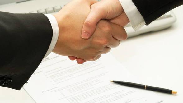 Cu ce justifica microintreprinderile activitatile de consultanta si management