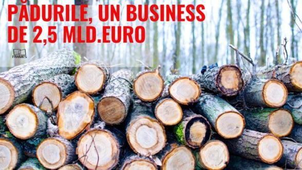 Cum au ajuns padurile Romaniei un business de peste 2,5 miliarde de euro