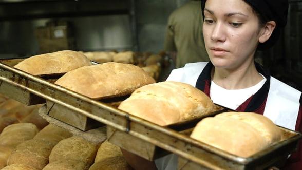 Cum moare o industrie de baza in Romania: Nimeni nu mai vrea sa invete meserie!