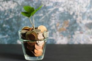 Cum poți obține un credit de nevoi personale când ai un salariu mult prea mic. Cine este coplătitorul