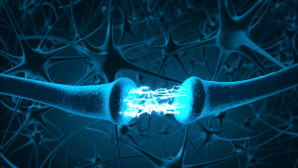 Cum poti mentine sanatatea sistemului nervos