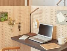 Cum se munceste de acasa cu eficienta maxima. Sfaturi sanatoase pentru a ramane la fel de activ ca la birou