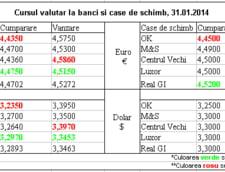 Curs de schimb valutar la banci si case de schimb, 31.01.2014