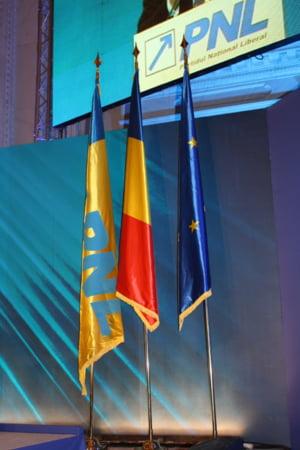 Cursa pentru presedintia PNL incepe oficial. Orban si Busoi isi depun candidaturile