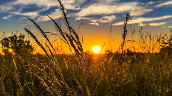 Daea: Romania va avea pentru prima data in istorie trei ani agricoli buni unul dupa altul