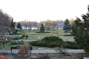 Decizie irevocabila: 7 hectare din Parcul Herastrau revin la Primaria Bucuresti