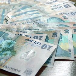Detinatorii de microintreprinderi mai au 3 zile sa-si schimbe statutul