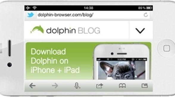 Dolphin prezinta Engine Browser beta