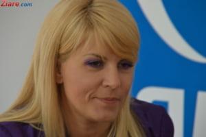 Elena Udrea, denuntata de Dinu Pescariu care i-ar fi dat jumatate de milion de euro