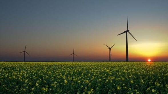 Energie verde: Guvernul are in plan taierea subventiilor