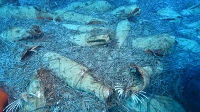 Epava unei nave din timpul Imperiului Roman, descoperita in Europa, in apropierea unei populare statiuni turistice
