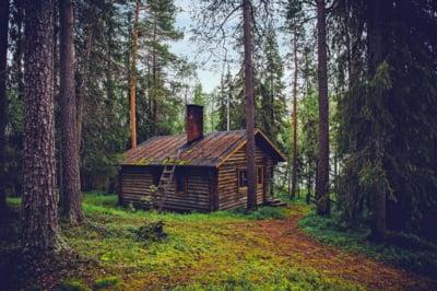 Experimentul finlandez a esuat: Ce au facut oamenii care au avut venitul minim garantat timp de doi ani