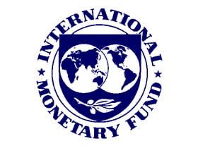 FMI: Economia mondiala se va contracta cu 0,5-1% in 2009